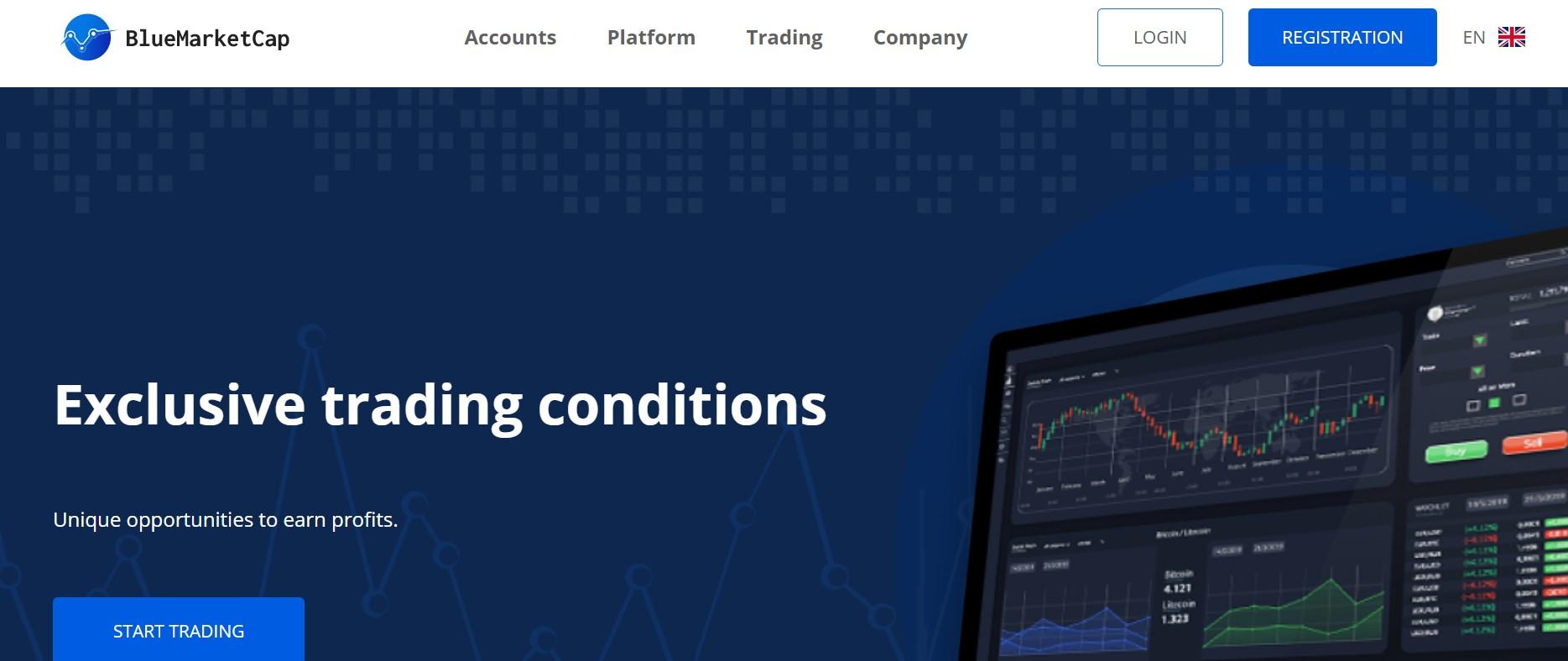 BlueMarketCap website